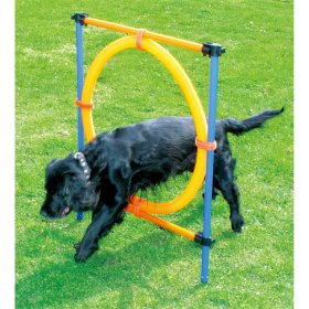 Agility Jump Ring Dog Training Hurdle - Agility springring - 117x10x10cm