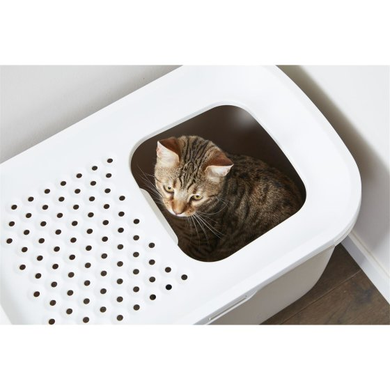 3er Sparpack cat toilet HOP IN entry from above beige with free toys